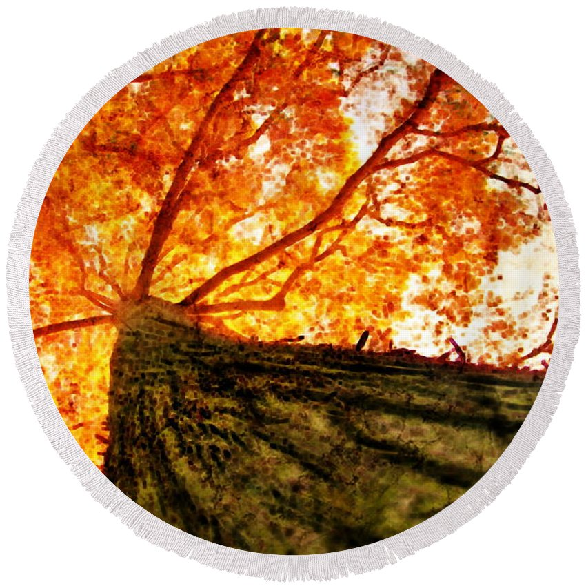 Roots Round Beach Towel featuring the photograph Roots To Branches IIi by Floyd Menezes