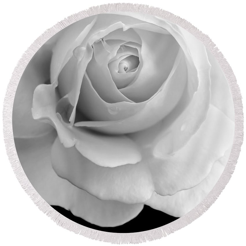 Rose Round Beach Towel featuring the photograph Rose Flower Macro Black And White by Jennie Marie Schell
