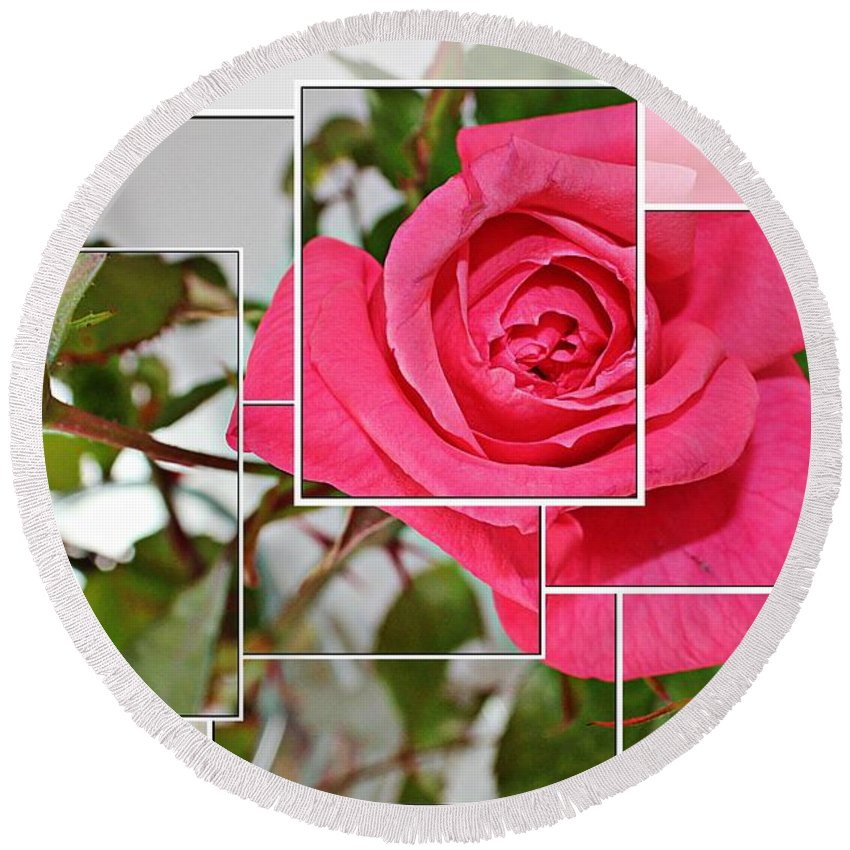 Rose Montage Round Beach Towel featuring the photograph Rose Montage by Barbara Griffin