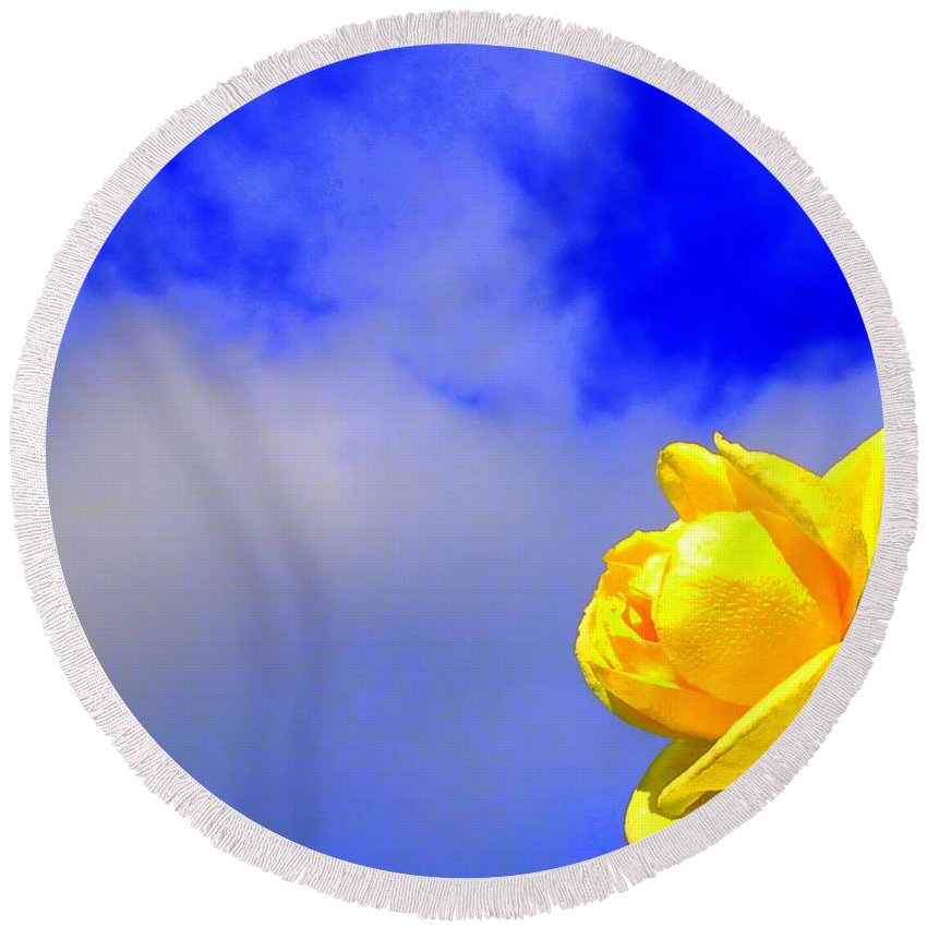 Rose Cloud Flower Stem Leaf Nature Spring Yellow Blue Green Floral Round Beach Towel featuring the photograph Rose To The Sky by Guy Pettingell