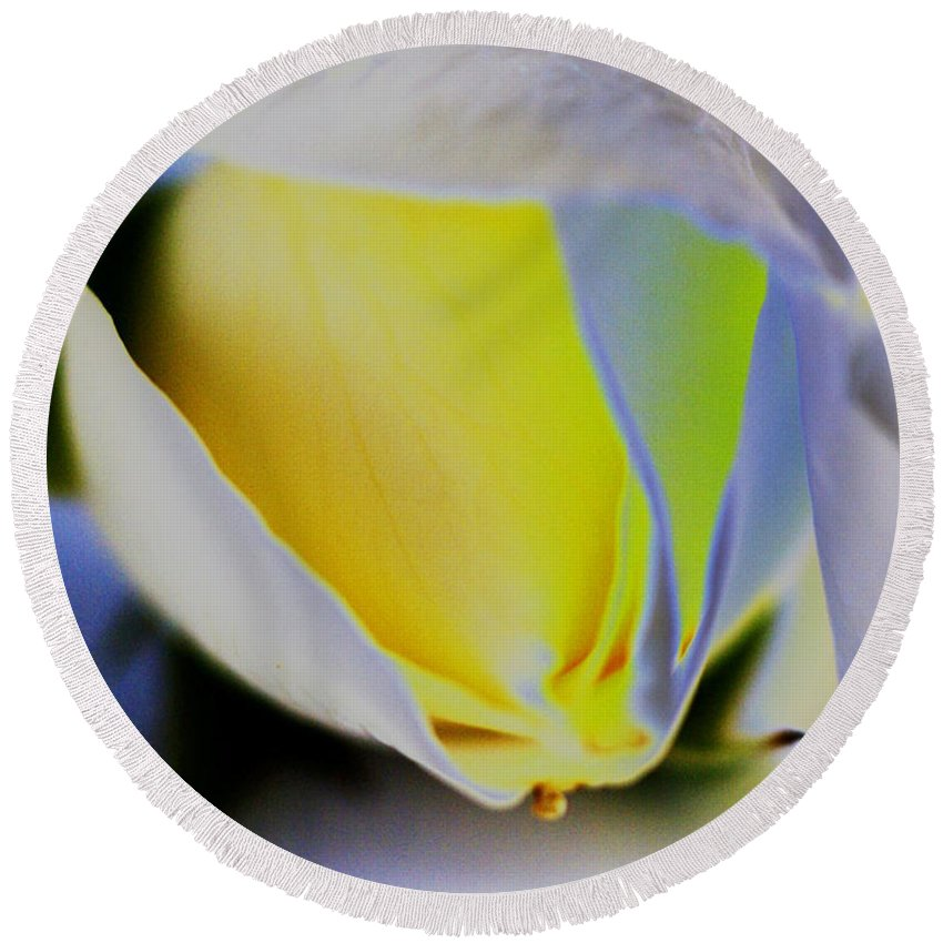 Yellow Round Beach Towel featuring the digital art Rose Yellow by Carol Lynch