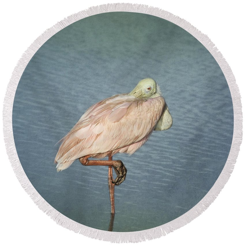 Roseate Spoonbill Round Beach Towel featuring the photograph Roseate Spoonbill by Kim Hojnacki