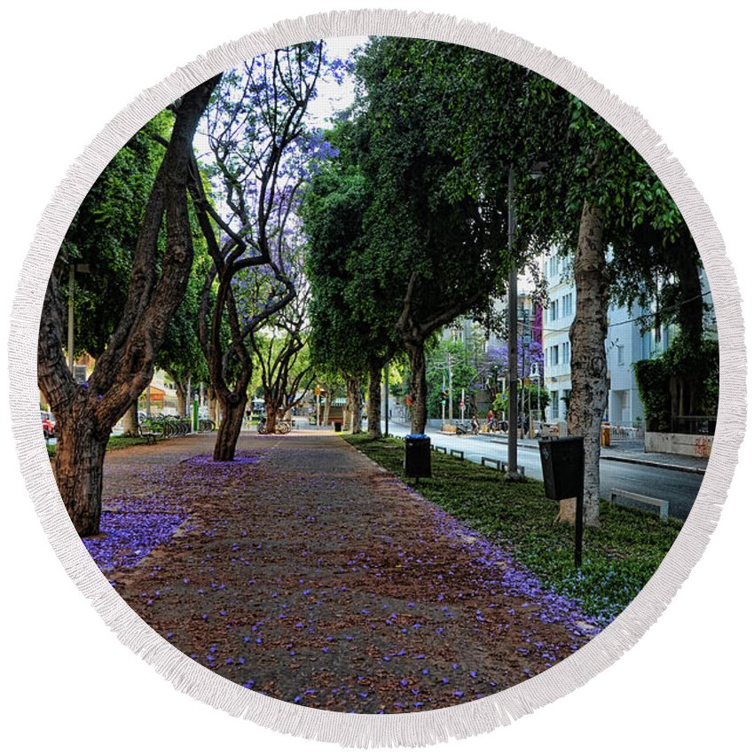 Foliage Round Beach Towel featuring the photograph Rothschild Boulevard by Ron Shoshani