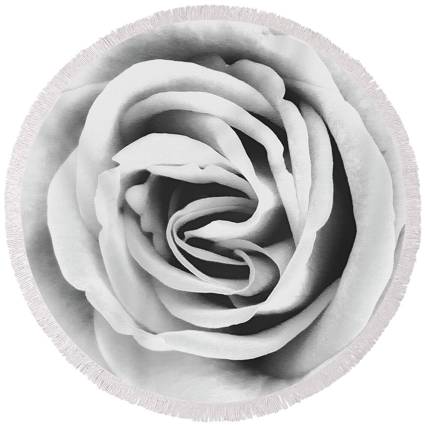 Roses Round Beach Towel featuring the photograph Rubellite Rose Bw Palm Springs by William Dey
