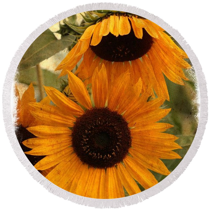 Sunflower Round Beach Towel featuring the photograph Rustic Sunflowers by Carol Groenen