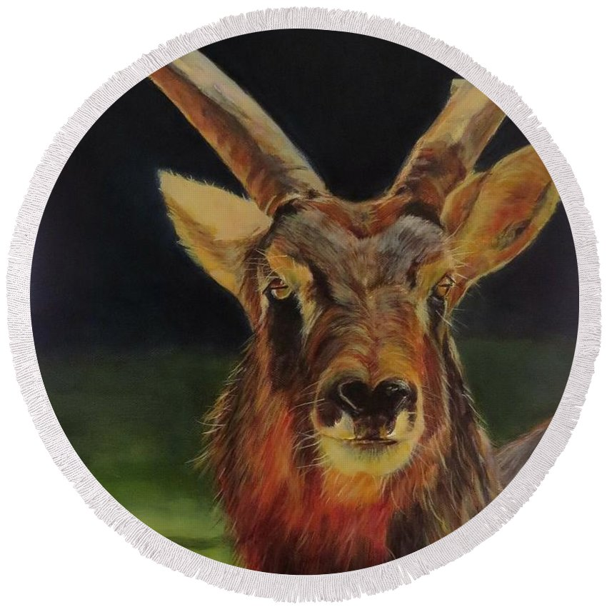 Sable Antelope Round Beach Towel featuring the painting Sable Antelope by Sandra Reeves