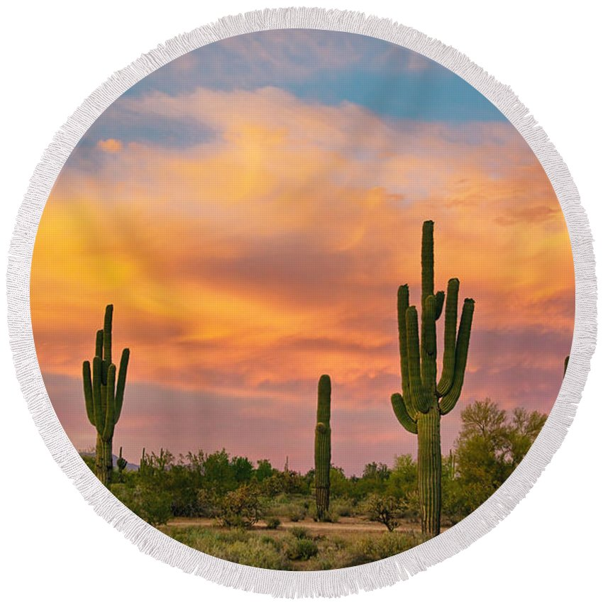 Saguaro Round Beach Towel featuring the photograph Saguaro Desert Life by James BO Insogna