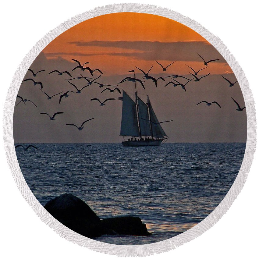 Birds Round Beach Towel featuring the photograph Sailing by Jennifer Robin