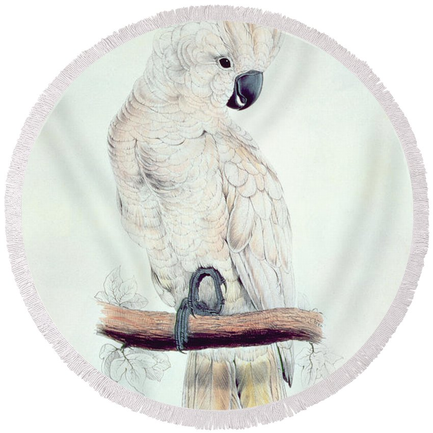 Exotic Round Beach Towel featuring the painting Salmon Crested Cockatoo by Edward Lear