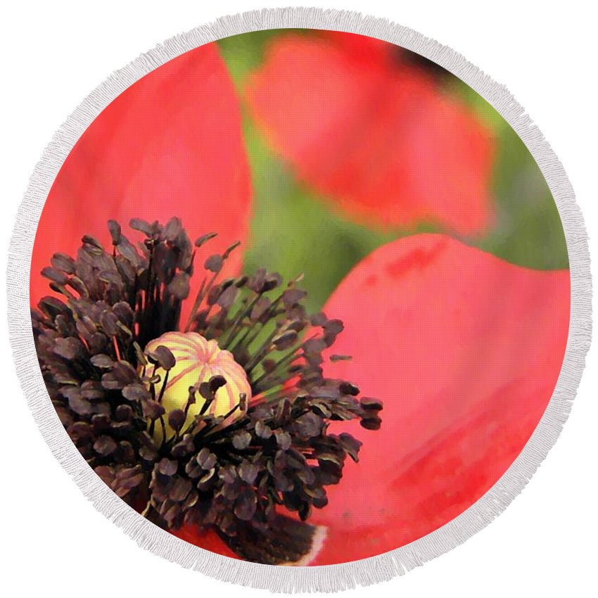 Poppies Round Beach Towel featuring the photograph Scarlet Poppy Macro by Chris Berry