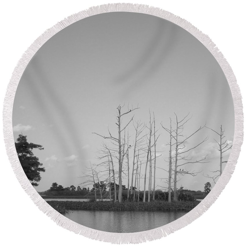 Cypress Trees Round Beach Towel featuring the photograph Scenic Swamp Cypress Trees Black And White by Joseph Baril