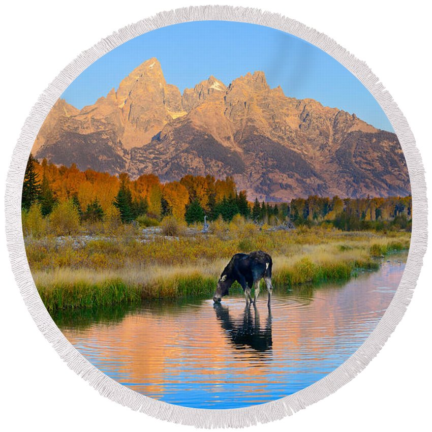 Grand Teton National Park Round Beach Towel featuring the photograph Schwabacher Morning Light by Greg Norrell