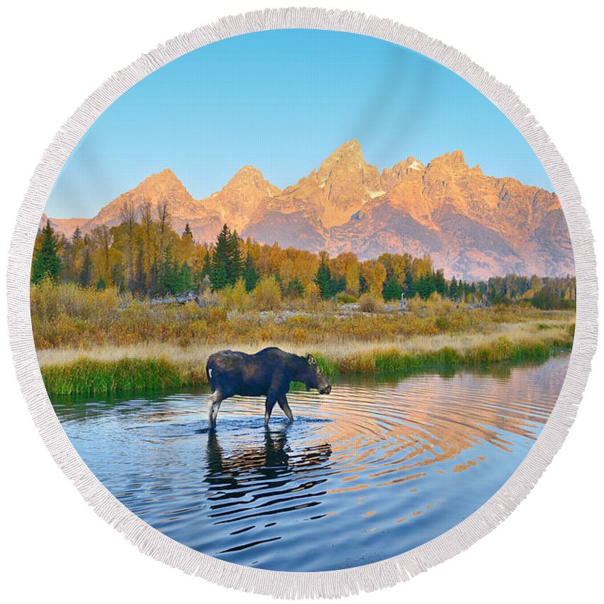 Grand Teton National Park Round Beach Towel featuring the photograph Schwabacher Morning Travels by Greg Norrell