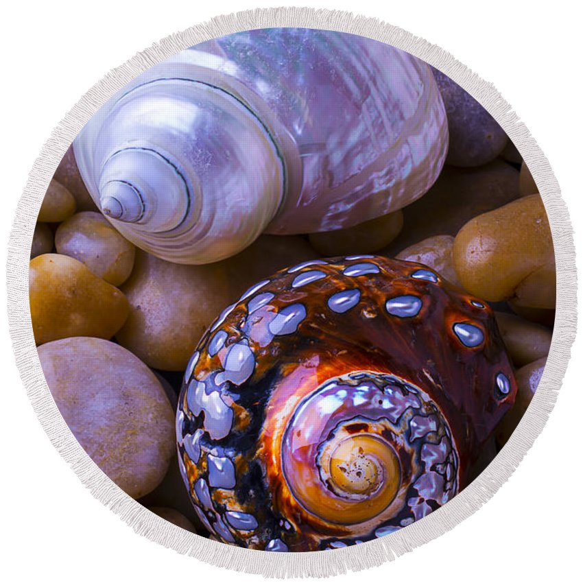 White Round Beach Towel featuring the photograph Sea Snail Shells by Garry Gay