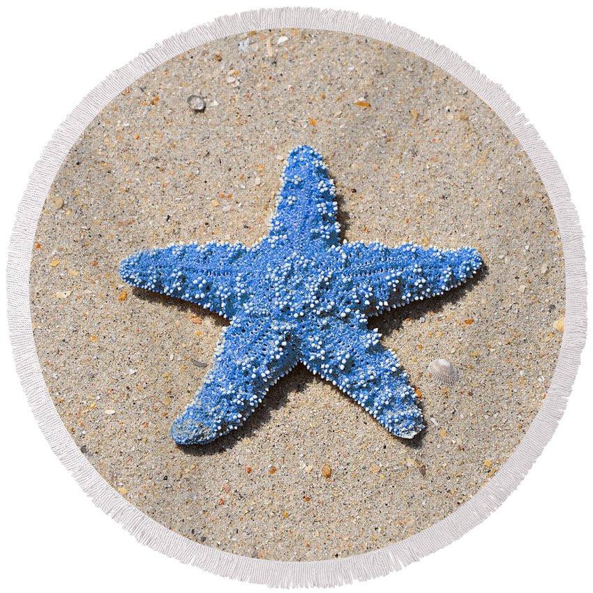 Sea Star Round Beach Towel featuring the photograph Sea Star - Light Blue by Al Powell Photography USA