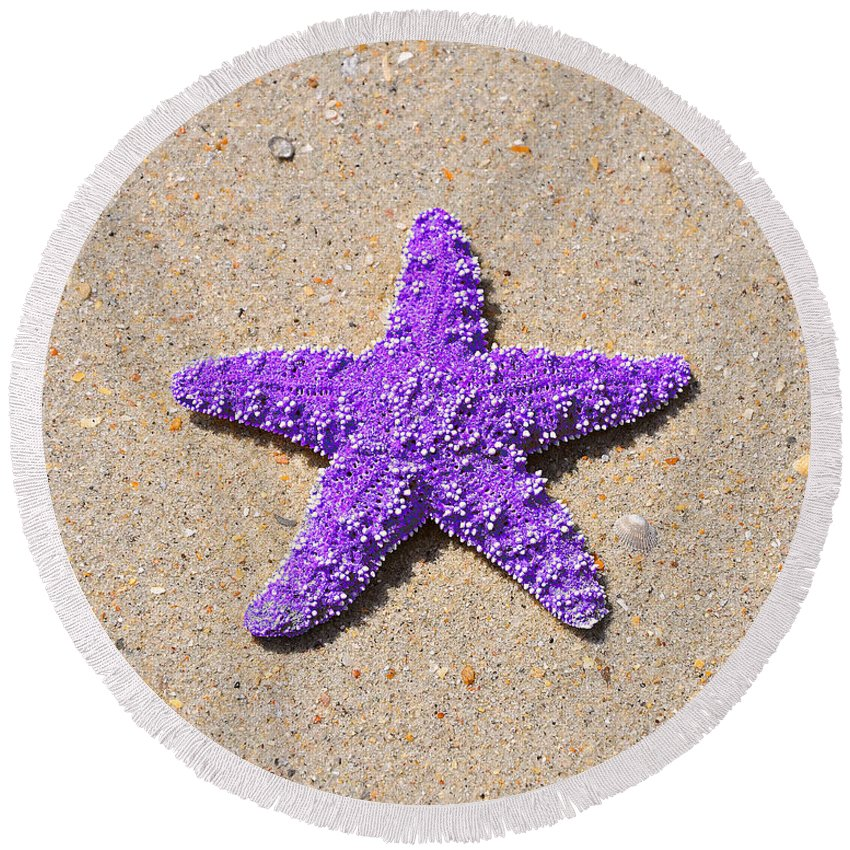 Sea Star Round Beach Towel featuring the photograph Sea Star - Purple by Al Powell Photography USA