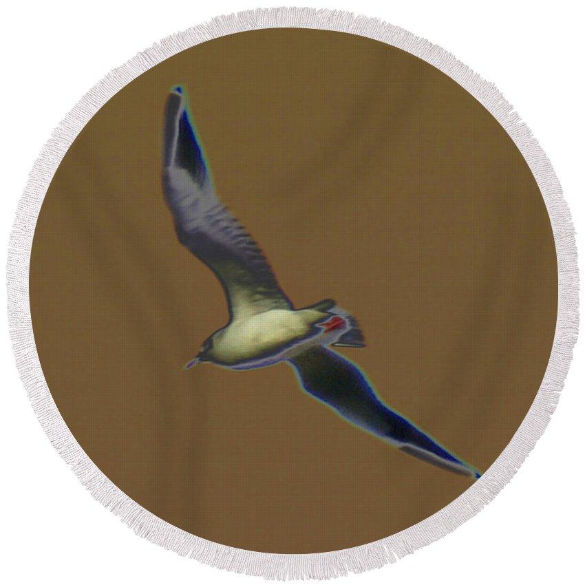 Bird Round Beach Towel featuring the digital art Seagull by Carol Lynch