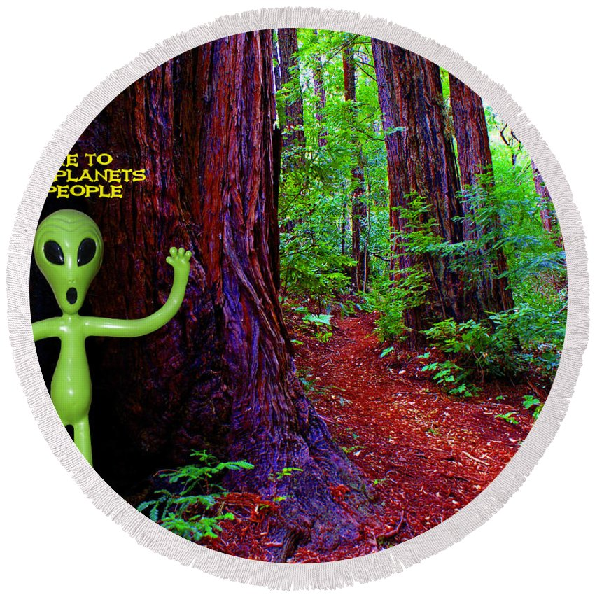 Aliens Round Beach Towel featuring the photograph Searching For Friends Among The Redwoods by Ben Upham III