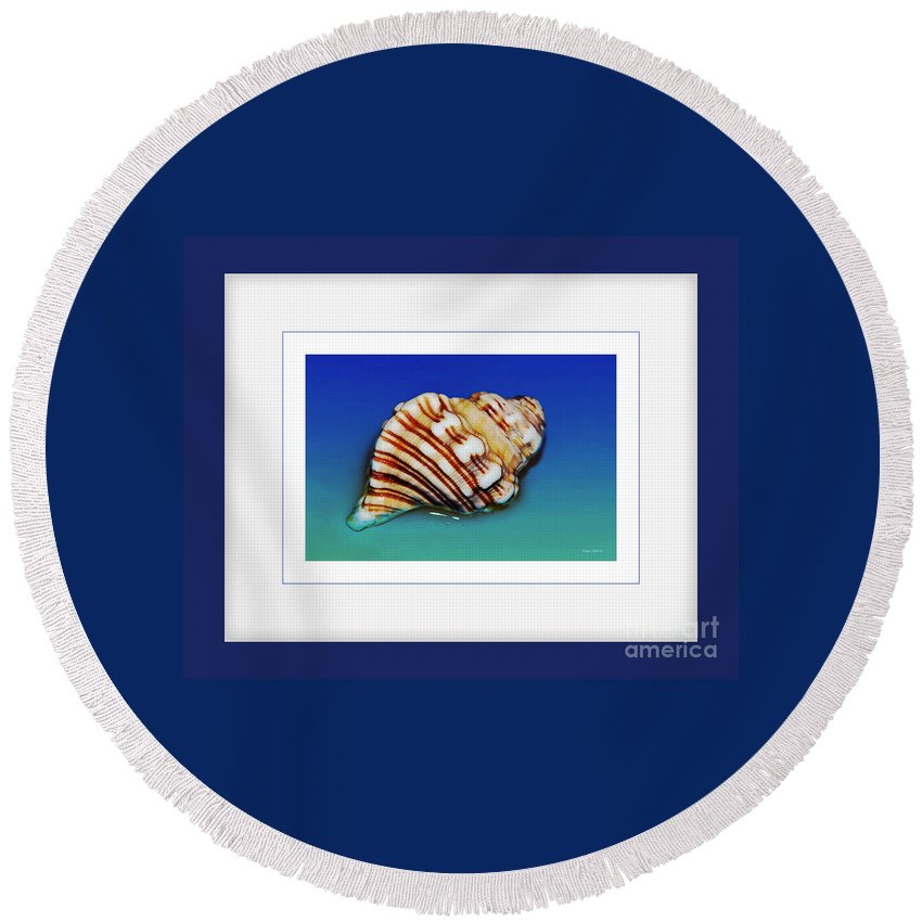 Photography Round Beach Towel featuring the photograph Seashell Wall Art 1 - Blue Frame by Kaye Menner
