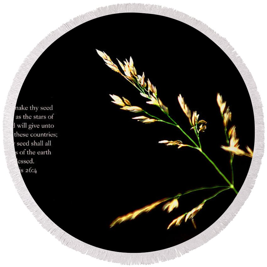 Nature Round Beach Towel featuring the photograph Seed by Debbie Nobile