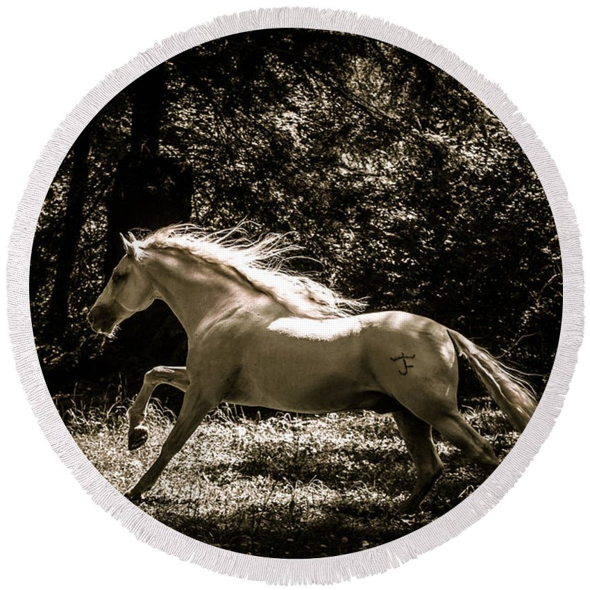 Sepia Stallion Round Beach Towel featuring the photograph Sepia Stallion by Wes and Dotty Weber