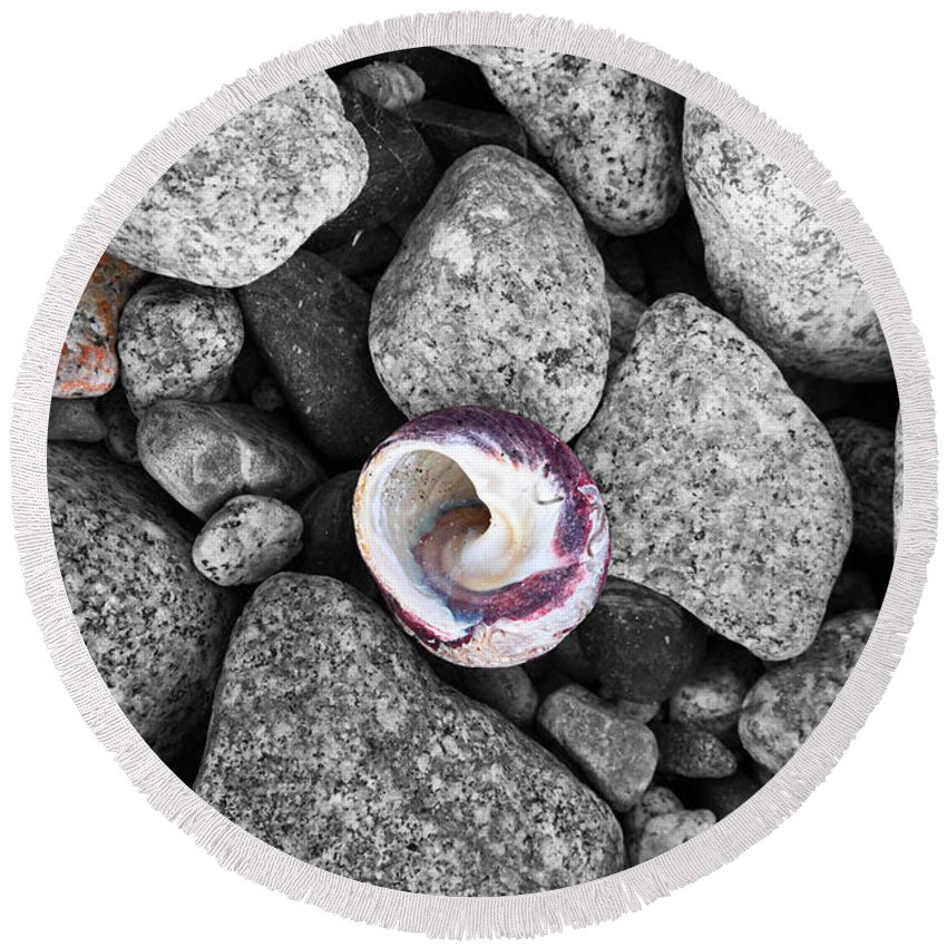 Shell Round Beach Towel featuring the photograph Shell On The Shore 2 by James Brunker