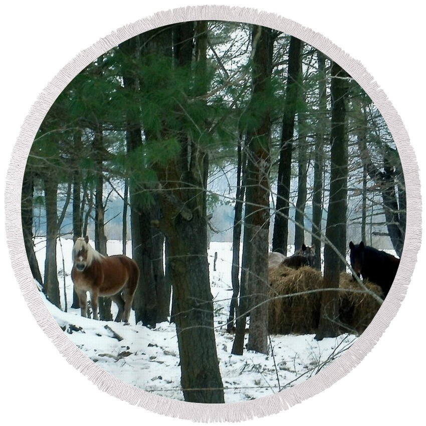 New York Round Beach Towel featuring the photograph Sheltered In The Trees by Christian Mattison