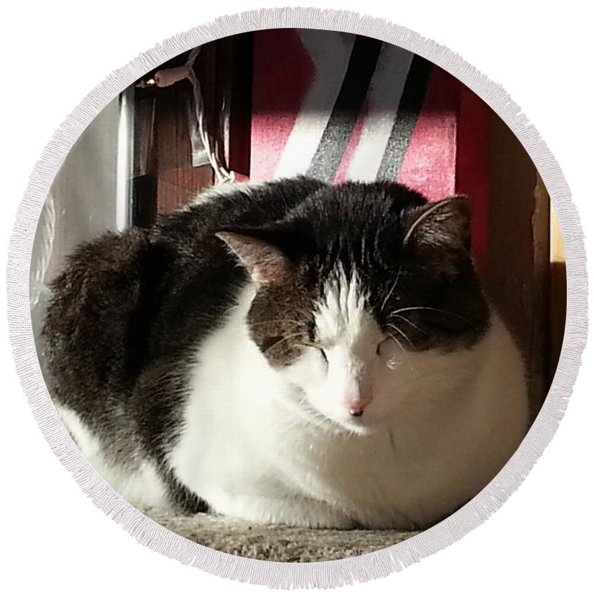 Cat Round Beach Towel featuring the photograph Shhh by Caryl J Bohn