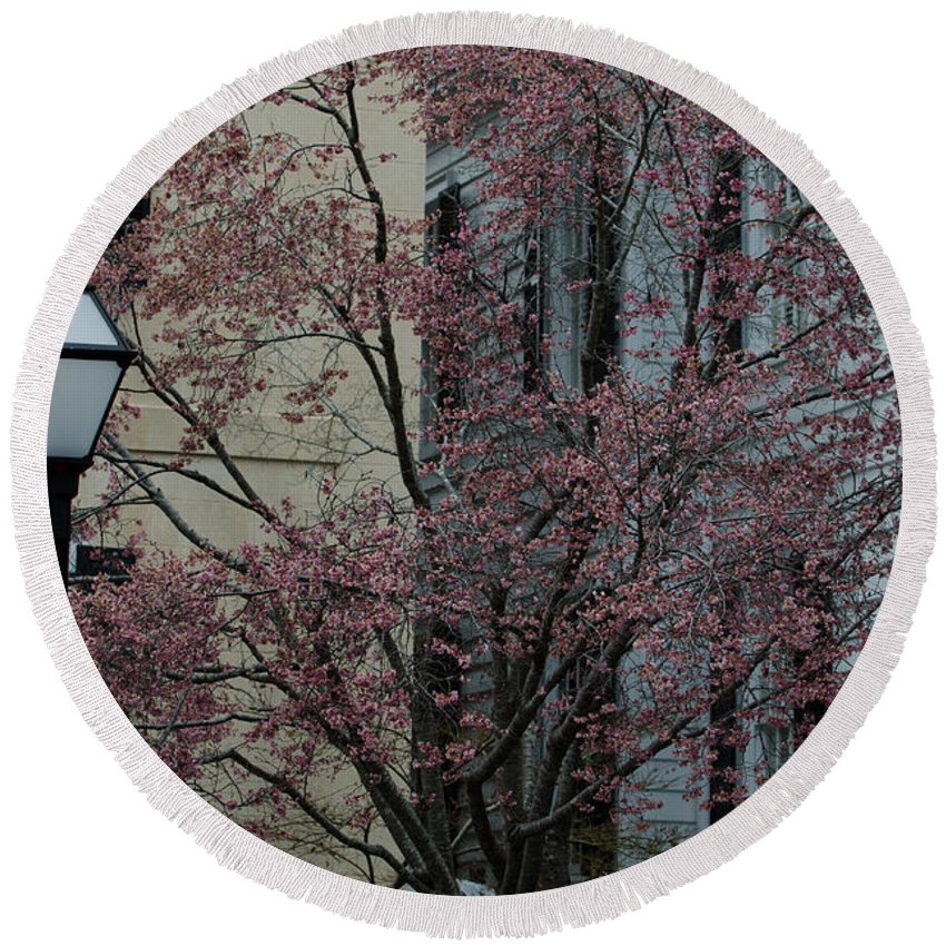 Dogwood Round Beach Towel featuring the photograph Signs Of Spring by Dale Powell