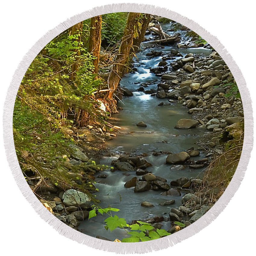 Nature Round Beach Towel featuring the photograph Silky Stream In Rain Forest Landscape Art Prints by Valerie Garner