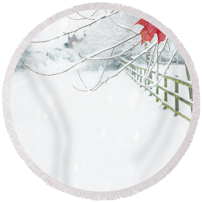 Single Round Beach Towel featuring the photograph Single Red Leaf by Amanda Elwell