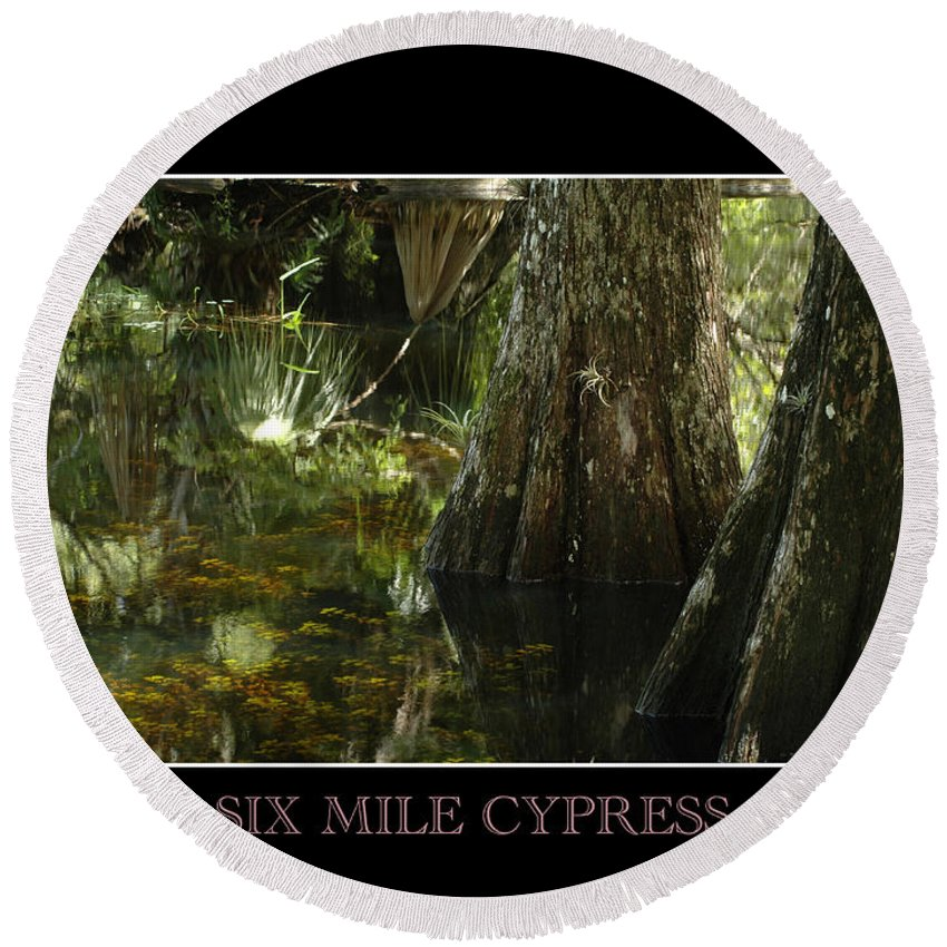 Cypress Round Beach Towel featuring the photograph Six Mile Cypress Fort Myers Florida by David Weeks
