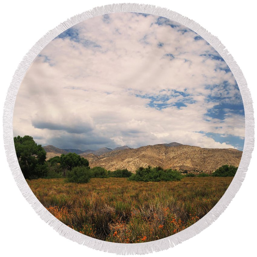 Big Morongo Canyon Preserve Round Beach Towel featuring the photograph Slowly I Tread by Laurie Search