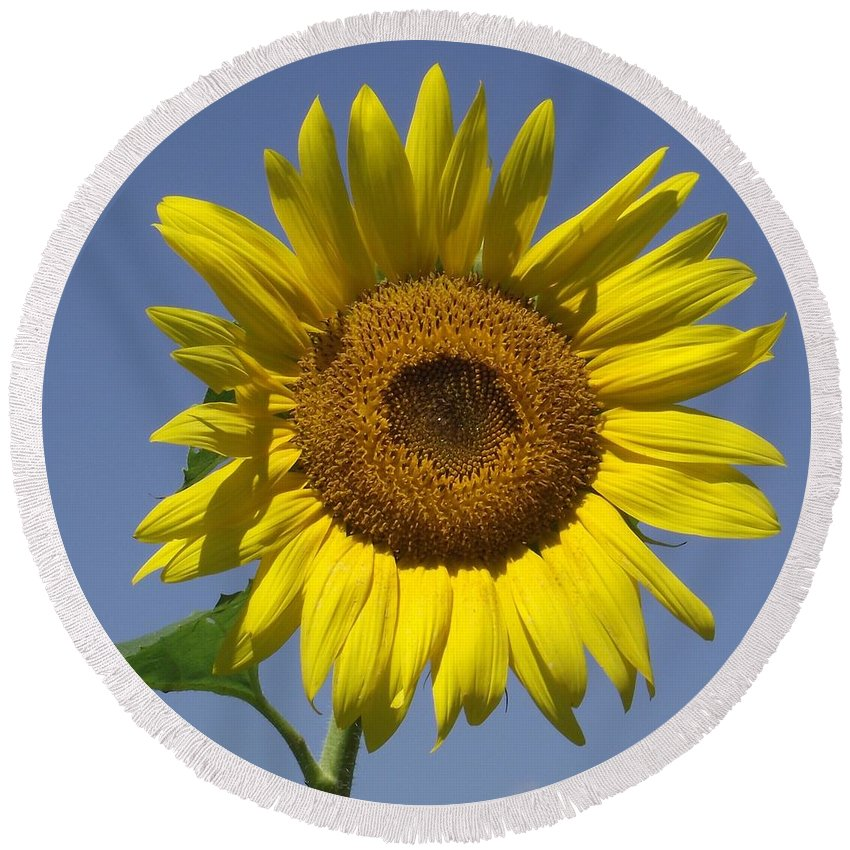 Sunflower Round Beach Towel featuring the photograph Smile by Michelle Welles