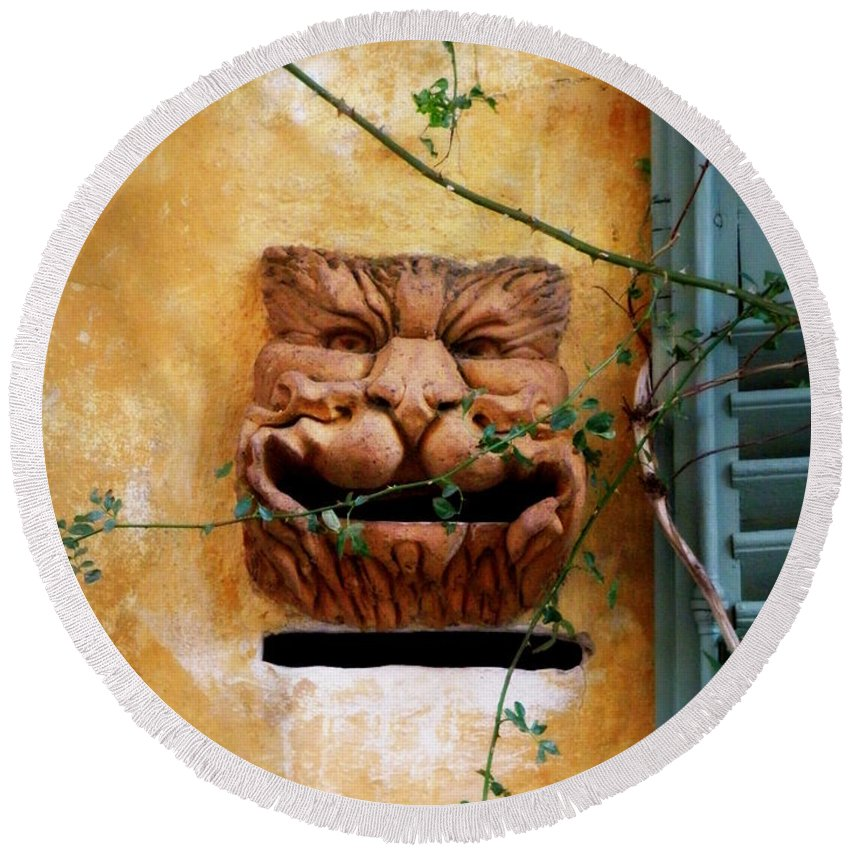 Mail Box Round Beach Towel featuring the photograph Smiling Cat Mail Box by Lainie Wrightson