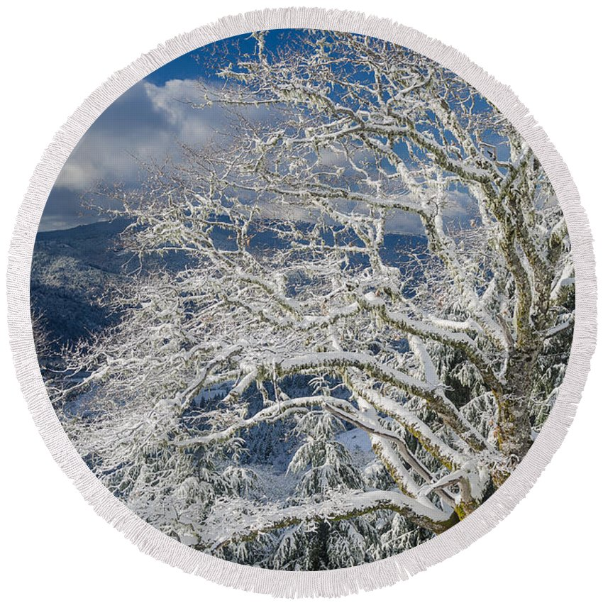 Dramatic Sky Round Beach Towel featuring the photograph Snow Covered Tree And Winter Scene by Greg Nyquist