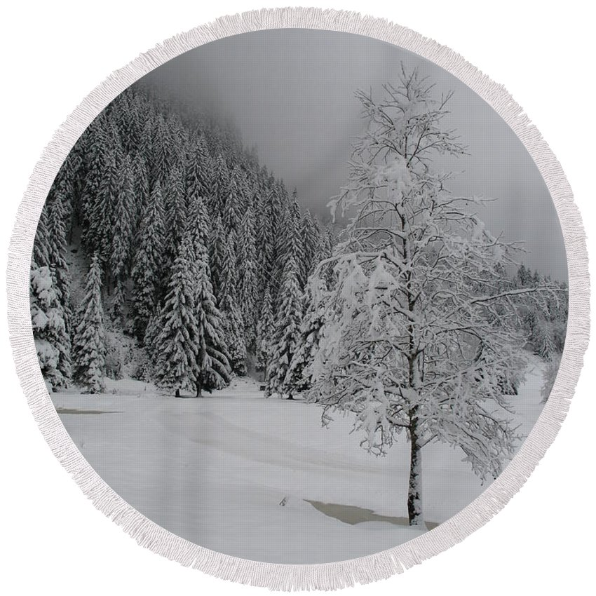 Snow Round Beach Towel featuring the photograph Snow Tree by Christiane Schulze Art And Photography