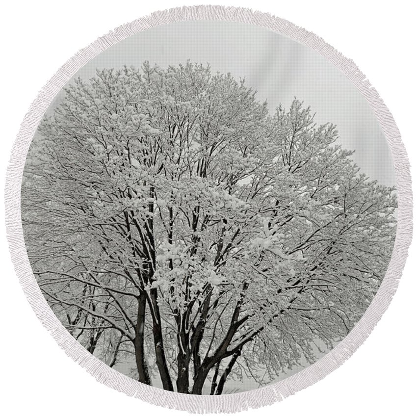 Snow Round Beach Towel featuring the photograph Snowy Trees by Richard Bryce and Family