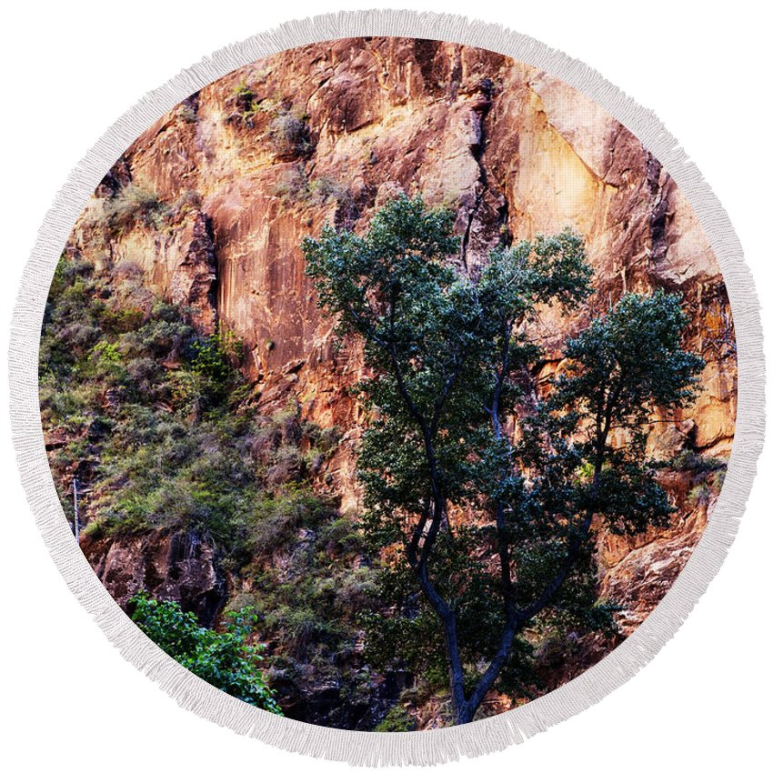 Canyon Round Beach Towel featuring the photograph So Zion by Marilyn Hunt