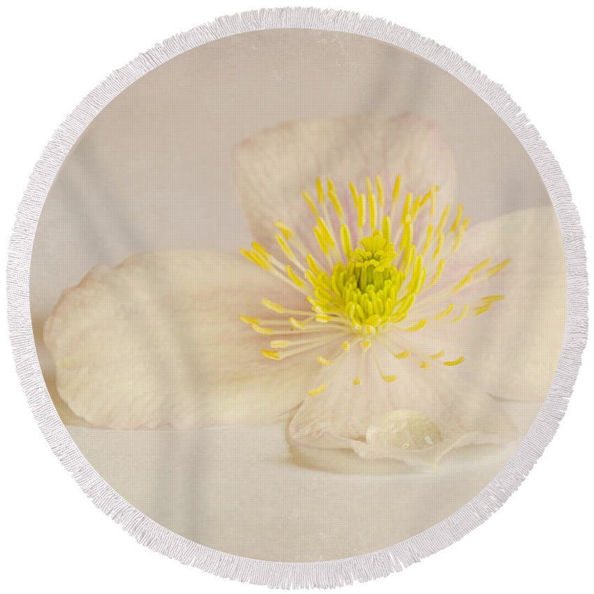 Anniversary Round Beach Towel featuring the photograph Soft Pink Flower by Svetlana Sewell