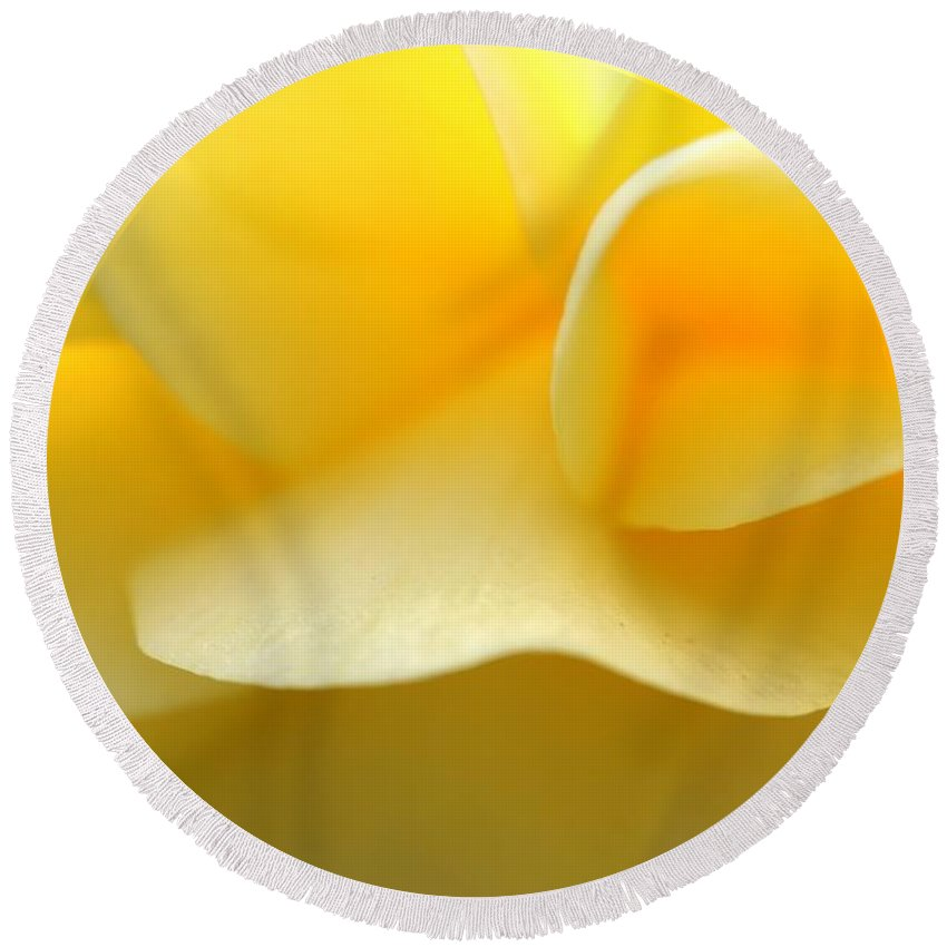 Leaf Round Beach Towel featuring the photograph Soft Yellow by Tap On Photo