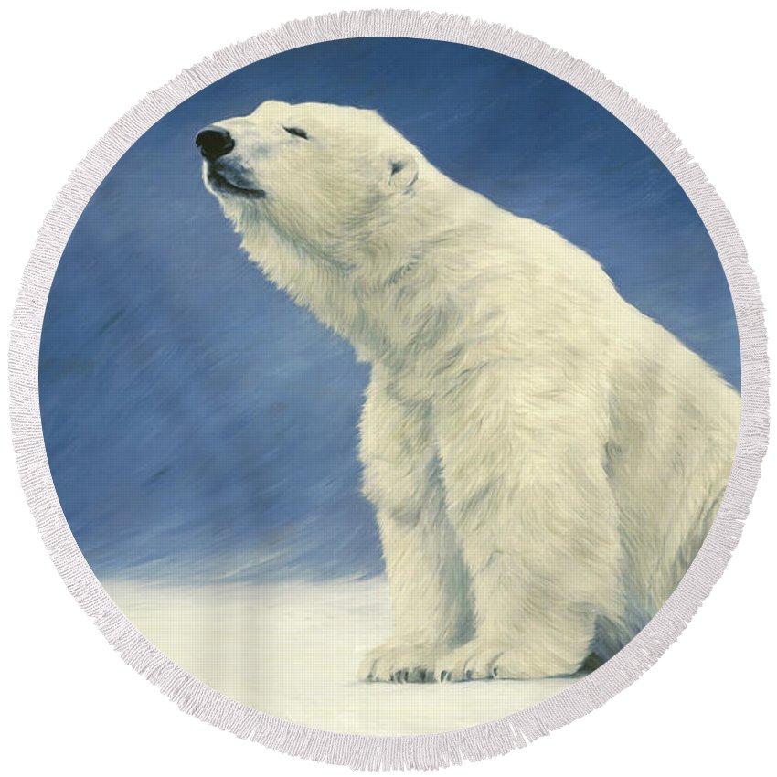 Polar Bear Round Beach Towels