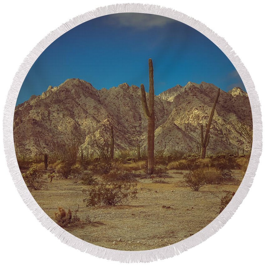 Arizona Round Beach Towel featuring the photograph Sonoran Desert by Robert Bales