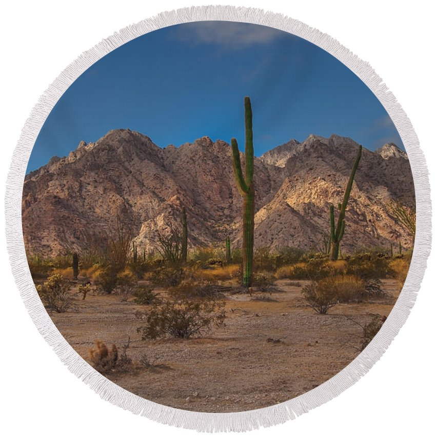 Arizona Round Beach Towel featuring the photograph Sonoran by Robert Bales