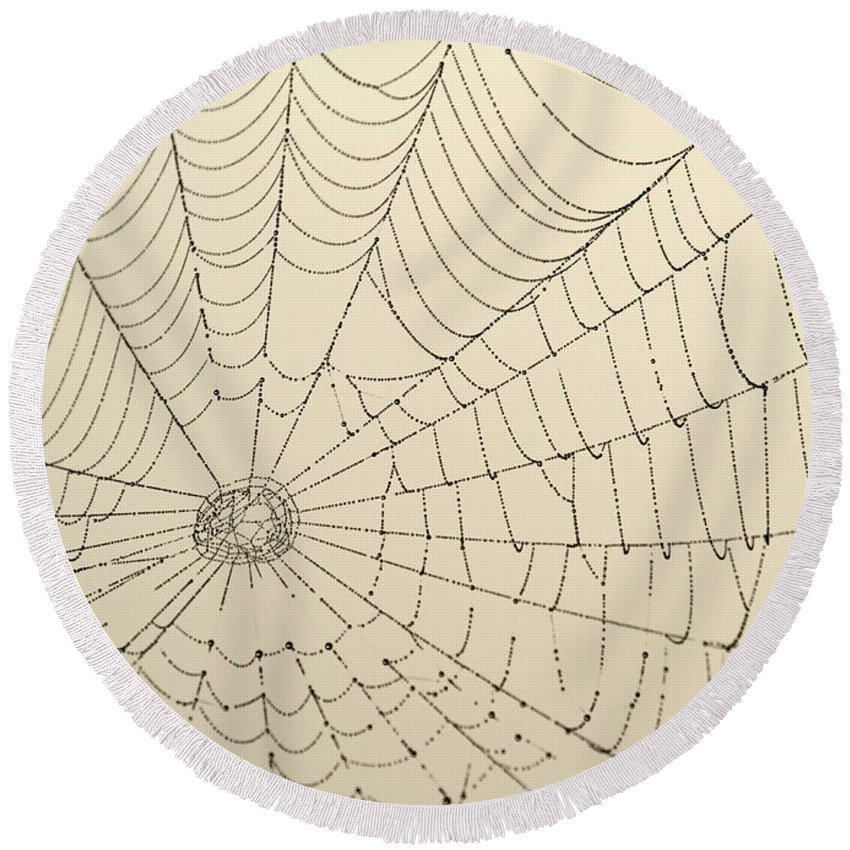 Spider Web Round Beach Towel featuring the photograph Spiderweb At Dawn by Sabrina L Ryan