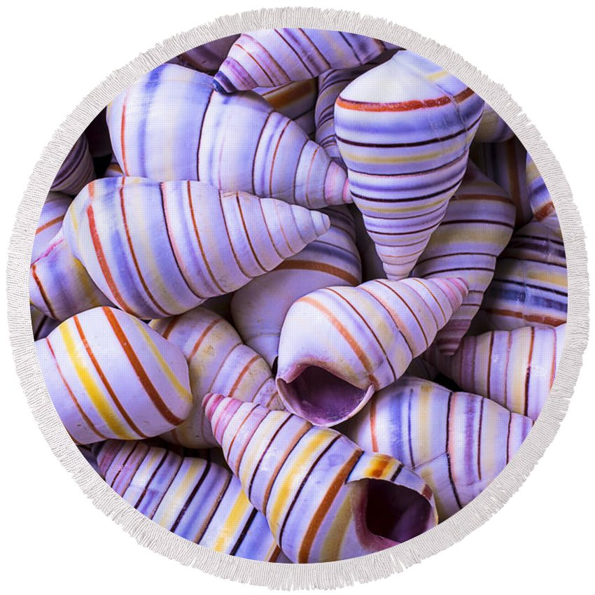 Spiral Round Beach Towel featuring the photograph Spiral Sea Shells by Garry Gay