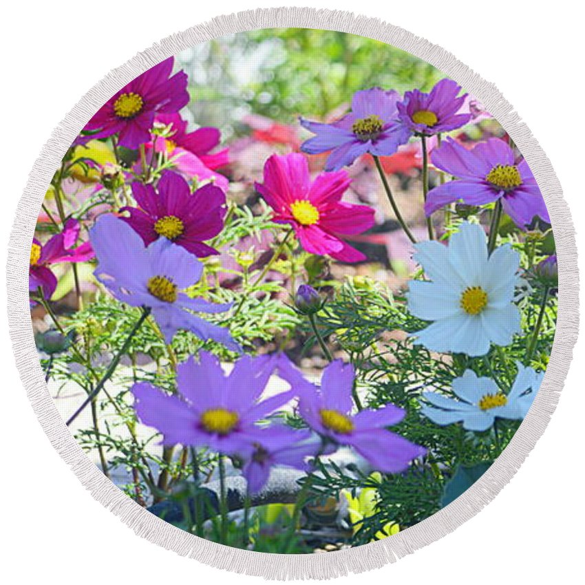 Flowers Round Beach Towel featuring the photograph Splash Of Color by AJ Schibig