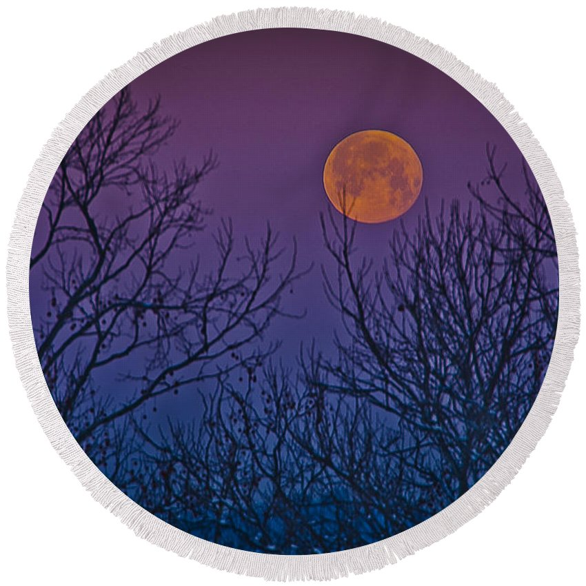 Moon Round Beach Towel featuring the photograph Spooky Beauty by Shirley Tinkham