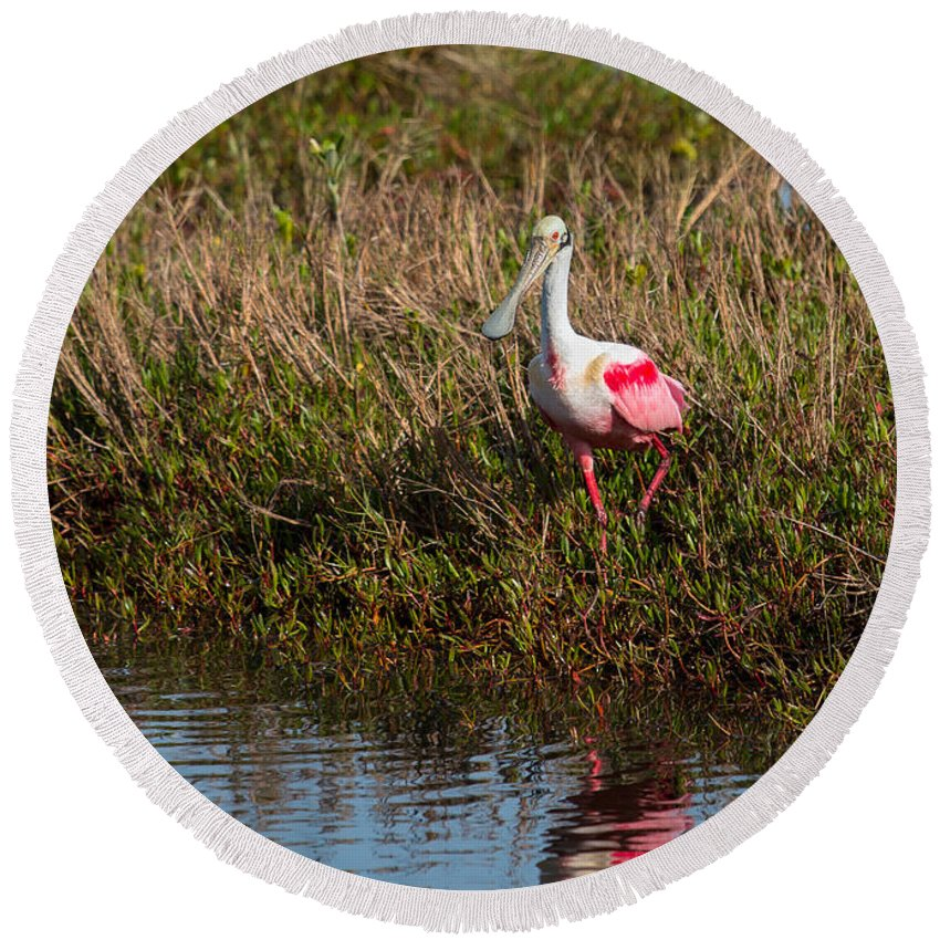 Animals Round Beach Towel featuring the photograph Spoonbill Island Hoping by John M Bailey