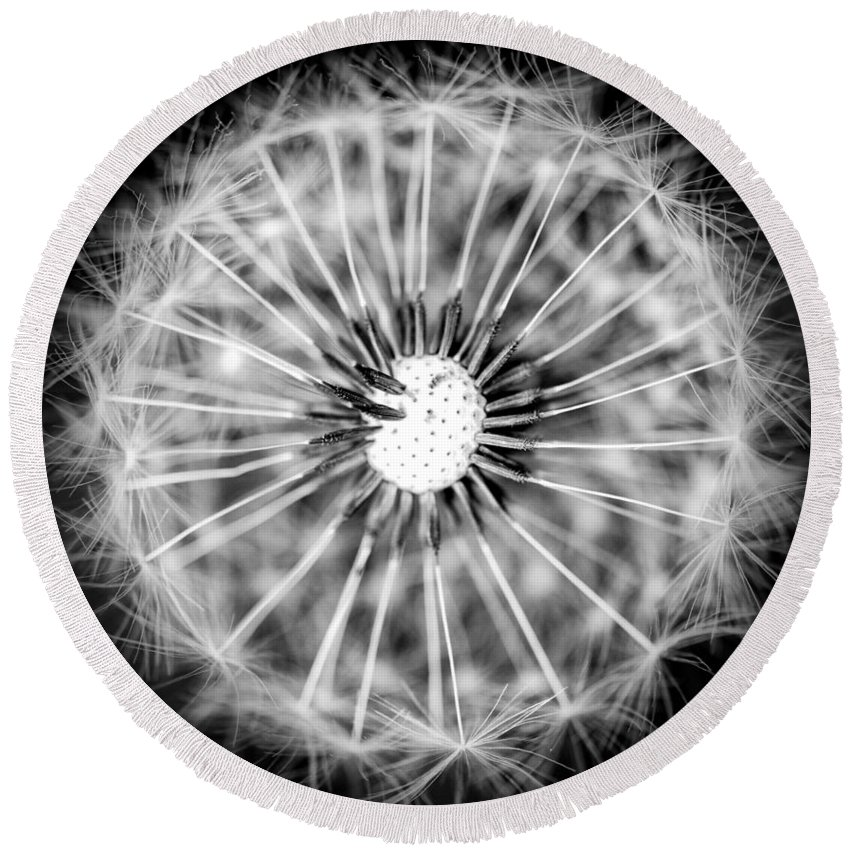 B&w Round Beach Towel featuring the photograph Spotlight by Sandra Parlow